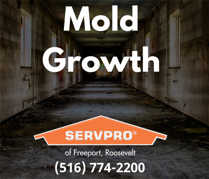 mold growth servpro commercial